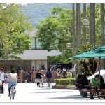 【最新版】高知県の大学偏差値ランキング